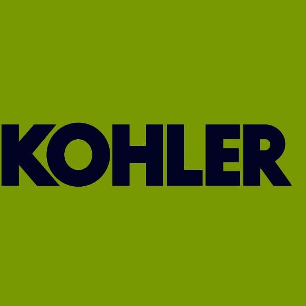 Kohler Genuine Piston Rings 2010801S, 2010801S, 2010804S [2010804S ...
